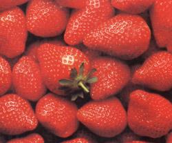 fresas.jpg